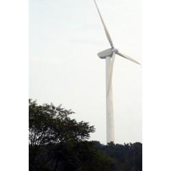 50kW Rüzgar (50000W)
